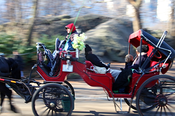 Hansom Cab in Central Park