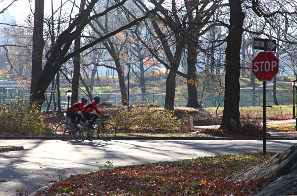Autumn Bicycle Riders in Central Park