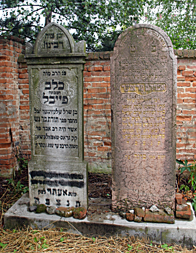 Grave of my great grandfather, Rabbi Avraham haLevi Prager of blessed memory in the Topolcany cemetery along side that of Rabbi Calev Schlesinger